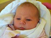Anna Krejčí se narodila 9. listopadu s váhou 3,85 kg a mírou 50 cm. Štěstím září rodiče Adéla Macháčková a Tomáš Krejčí z Turnova.