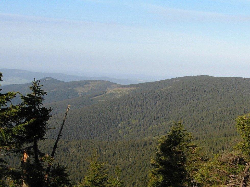Od pramene Moravy, pohled na Trojmezní horu a Malý Sněžník.