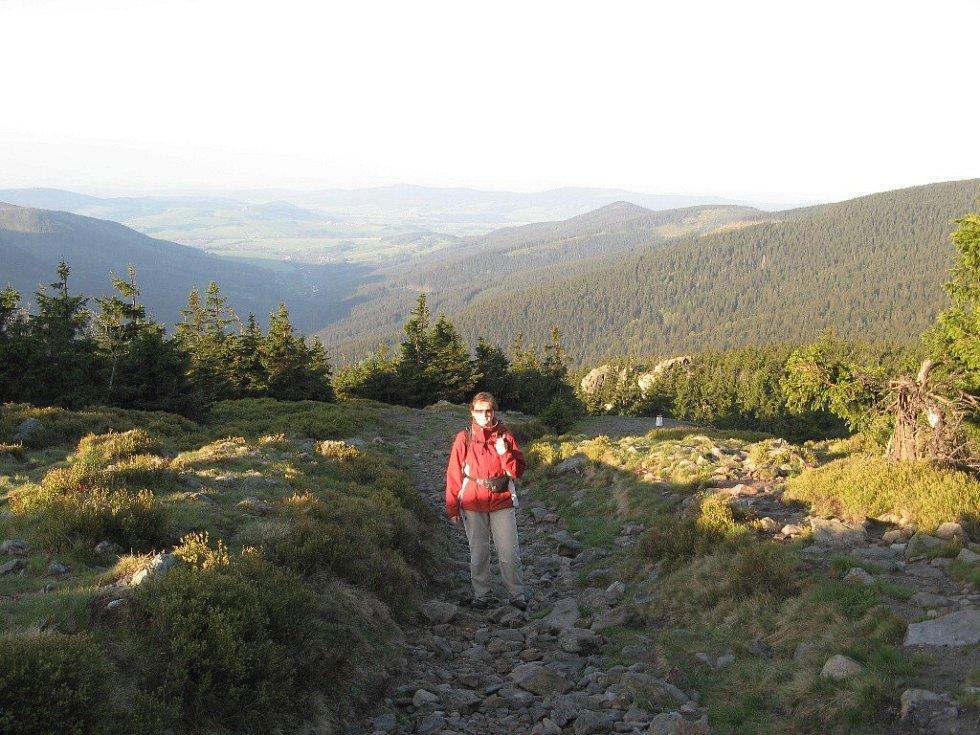 Pod vrcholem Sněžníku - v pozadí Trojmezní vrch.