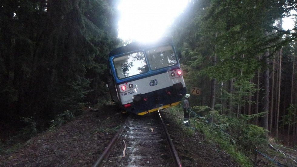 Vlak po nárazu do stromu vykolejil.