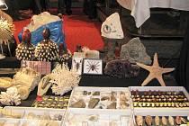 Podzimní výstava drahých kamenů a minerálů.