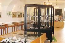 Z lomnického muzea - výstava kamenů.