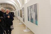 Výstava k nedožitým devadesátinám malíře a grafika Mistra Vladimíra Komárka.