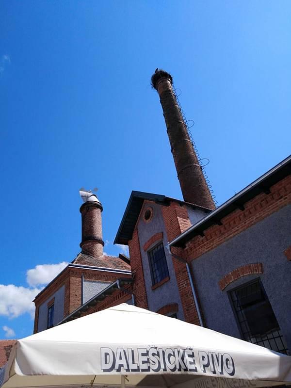Když se řekne Dalešice, tak si každý vybaví Postřižiny a Dalešický pivovar. Dalešice však mají ještě dominantu v podobě vodní nádrže s elektrárnou.