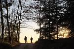 Lidé v Havlíčkově Brodě využili možnosti otevření sportovišť v rámci zmírnění zákazu volného pohybu osob. Dvojice chodců na cyklotrase mezi Termesivy a Pohledem u Havlíčkova Brodu.
