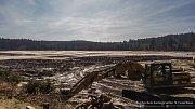 Vypuštěný Velký Pařezitý rybník na konci března.