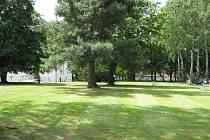 Prostranství mezi jednotlivými pavilony jihlavské psychiatrické léčebny jsou zelené a tato barva zůstane dominantní i po stávající revitalizaci.