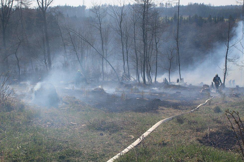 Požár lesního porostu u Ždánic na  Havlíčkobrodsku