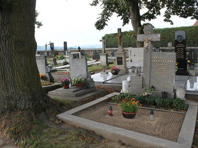 Nejen padající větve devastují hřbitov v Dolní Cerekvi. Kořeny stromů zvedají náhrobky  a chodník a narušují zdivo kolem hřbitova.