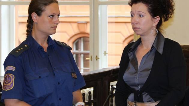 Mladá žena ze Žďárska se přiznala k vraždě svého tříletého syna. Proč to udělala, nedokázala u soudu vysvětlit, údajně byla v jakémsi transu.