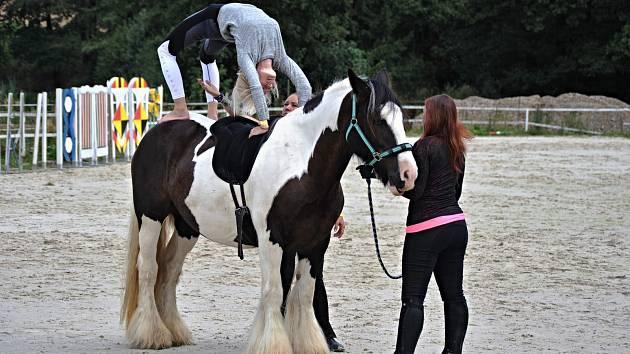 Loni byla v rámci Benefice v Plandrech k vidění i jóga na koních.