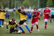 Na finanční podporu dosáhnou i fotbalové kluby, které vychovávají mladé hráče.