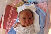Jan Dvořák z Olší u Telče se narodil 9. května v jindřichohradecké porodnici. Měřil 54 centimetrů a vážil 4320 gramů.