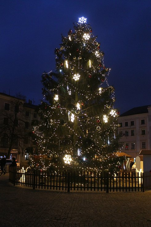 Vánoční strom v Jihlavě.