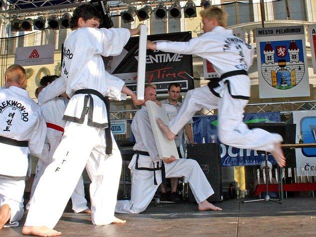 Sedmnáctý ročník pelhřimovského festivalu byl opět plný rekordů a kuriozit. Svoje umění předvedli i znalci bojového umění taekwondo.