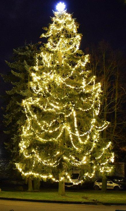 Vánoční strom v Myslibořicích.