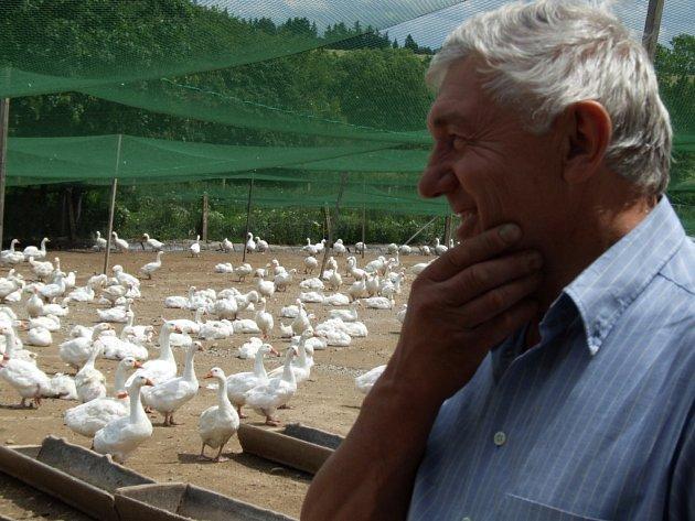 Zootechnik zemědělského družstva Dolní Cerekev Josef Holub si pochvaluje ochranu zelenými sítěmi od loňska, ale zároveň se netají obavami z proniknutí nákazy.