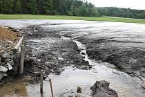 Vypuštěný Černý rybník u Smrčné na Jihlavsku zažívá zvláštní časy.