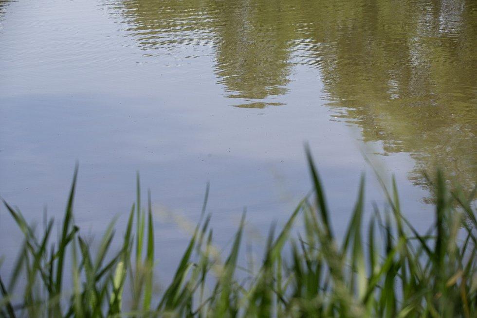 Sběr vzorků vody na Vysočině.