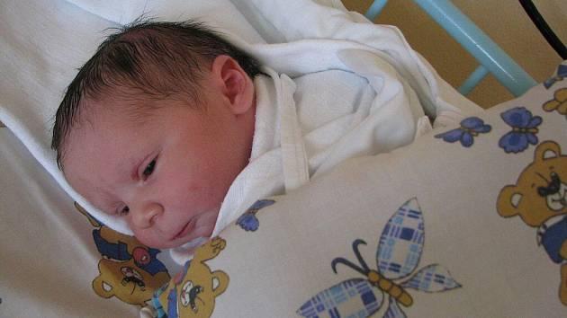 Nicol Pavlů, 11. 8. 2010, 3 325 g, Vyskytná