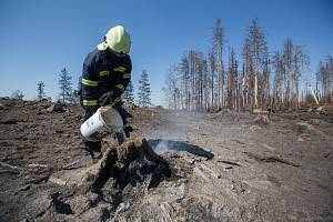 Dohašování ohnisek požáru. Hasiči na Vysočině bojují s následky požárů, které vznikly vinou horkého a suchého počasí v kombinaci s vypalováním staré trávy, lesní hrabanky a klestí.