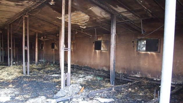 Přední část střechy a vybavení haly za zhruba sto tisíc korun lehly popelem. Přesto by chtěli zemědělci odchovnu kuřat do jara opravit.
