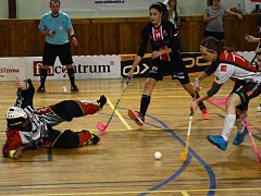 V sobotu se v dolnocerekevské hale rozhoří od 15.15 boj o první prvoligové body mezi florbalistkami FBŠ Jihlava a SK Jihlava.