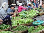 Na trhu najdete všechny odstíny zelené.