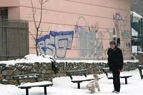 Za informaci policistům, která povede k dopadení sprejera, město uděluje odměnu pět tisíc korun.
