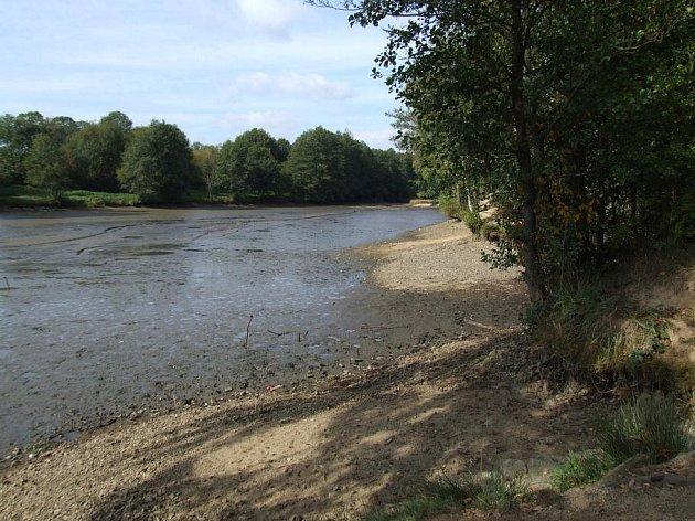 Rybník Borovinka