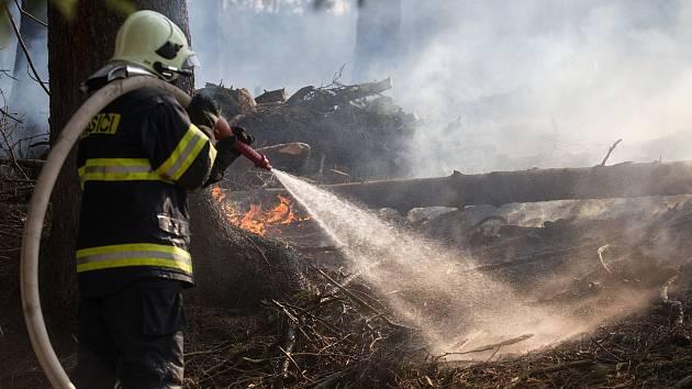 Lidé jsou nepoučitelní a hasiče na Vysočině kvůli nim zaměstnávají lesní požáry