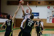 Basketbal, ilustrační foto.