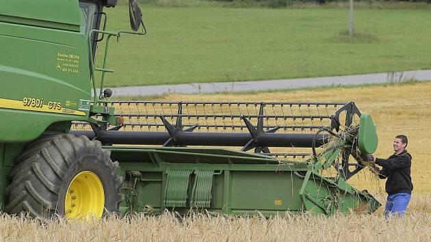Zemědělci na Vysočině posekli první hektary ozimého ječmene. Z hektaru průměrně sklidili 5,8 tuny, což je mírně podprůměrný výsledek. Ilustrační foto