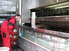 Jihlavský pivovar investoval do nové plnící linky. Za hodinu jí projede téměř 24 tisíc lahví. Je to skoro dvakrát víc než mělo kapacitu původní zařízení, které v pivovaru využívali.