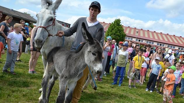 Hospodářský dvůr v Bohuslavicích patří rovněž Jiřímu Kovářovi