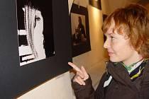 V galerii Alternativa při OGV v Jihlavě proběhla vernisáž výstavy Jihlava na kolenou.. K zahájení výstavy, která byla zároveň spojená s autorským čtením, zahrála jihlavská jazzová kapela Gobledyguk.