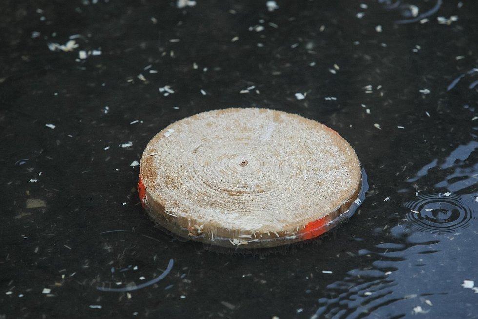 Finále mezinárodního klání dřevorubců Eurojack Jihlava.