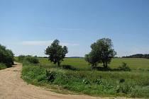 Cesta z Dobronína do Nových Dvorů vede kolem louky, na které se údajně nachází masový hrob.
