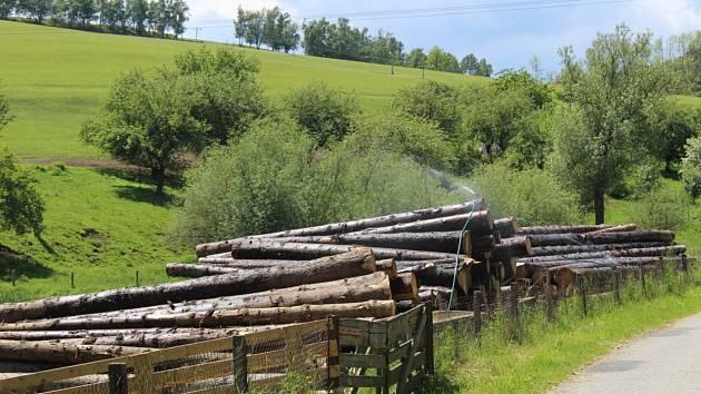 Nepořezané dřevo skladované pod závlahou vydrží několik let.