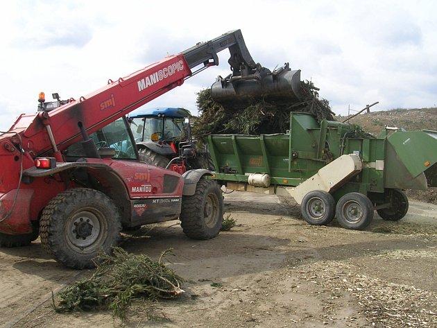 Vánoční stromky poslouží jako základ do kompostu.