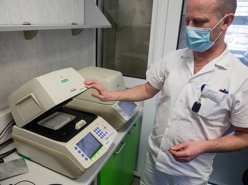 Laboratoře Státního veterinárního ústavu Jihlava, ve kterých testují vzorky z rohlíků s podezřením na Covid-19.