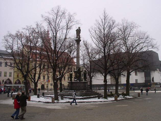 Zub času se podepsal na lipách kolem morového sloupu v horní části jihlavského Masarykova náměstí.