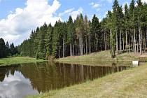 Bystřiny drží v lese vodu, kterou pak  mohou využít také hasiči.