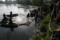 Zatímco na dně vypuštěného Štěpnického rybníka v samém centru Telče rybáři dokončovali práce spojené s výlovem, jejich práci sledovaly ve slunečném sobotním dopoledni desítky diváků.