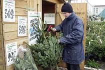Zloději tento rok mohou na krádež stromků doplatit. Radnice stromy nastříká speciálním repelentem.