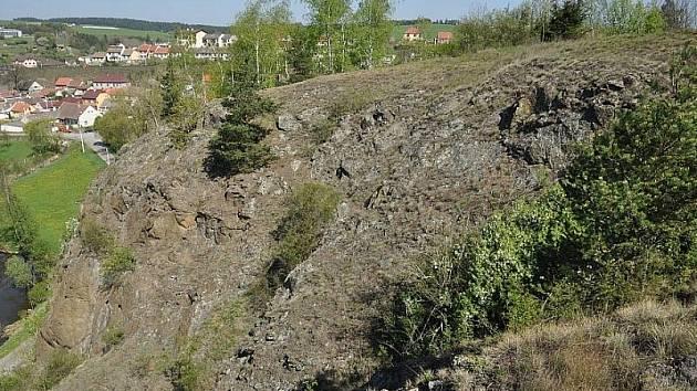 Ochránci přírody začali zachraňovat tradiční pastviny u Vladislavi na Třebíčsku.