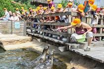 ZOO Jihlava i letos po celé léto pořádá příměstské tábory, ve kterých se děti seznámí se s životem zvířat v jihlavské zoo, dozví se řadu zajímavostí o rozmanitosti živočišné říše i její ochraně.
