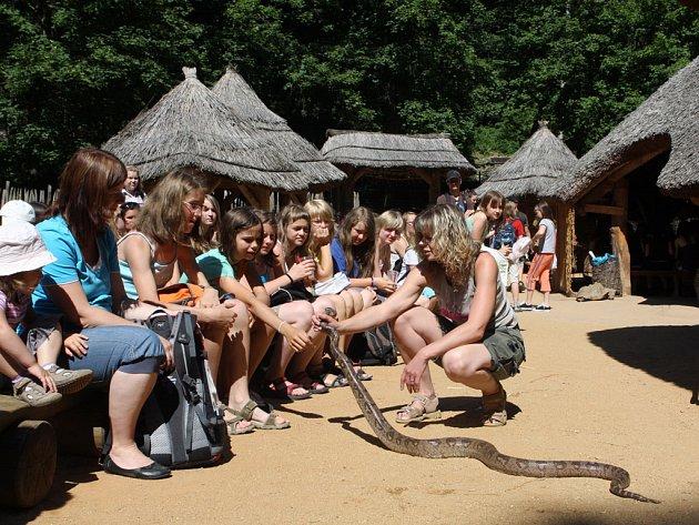Od začátku června do konce srpna se každou středu mohou návštěvníci jihlavské zoo dozvědět něco nového nejen o hadech. Zoo i letos připravila oblíbené Hadí středy.