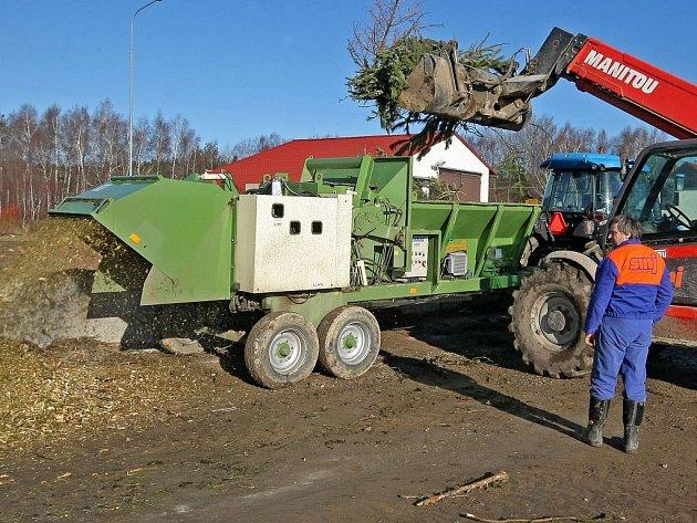Na dvanáct tun vánočních stromečků z celé Jihlavy skončilo ve štěpkovači na skládce v Jihlavě–Henčově.
