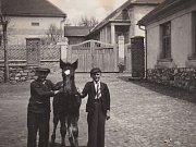 Ve Zhoři stále najdeme hospodu, před kterou stojí děti s hříbětem. Její dřívější majitel se živil tím, že s koňmi dovážel pivo a v zimě led. Koně  používal i k zemědělským pracím na svém hospodářství.
